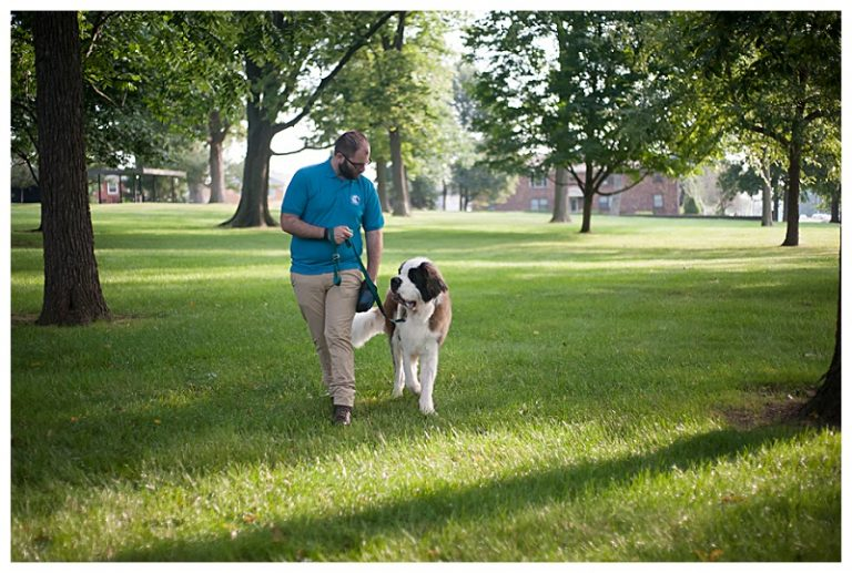 So You Want to be a Dog Trainer! - APDT