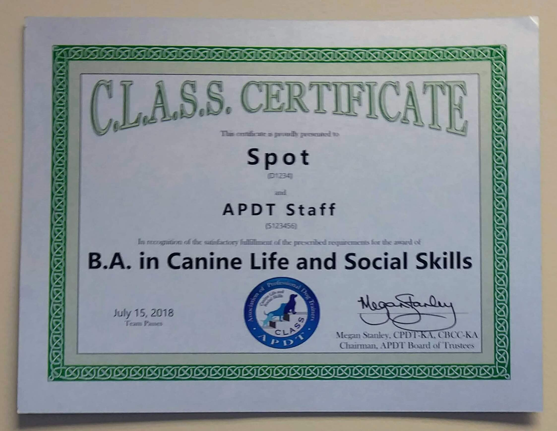 BA Certificate