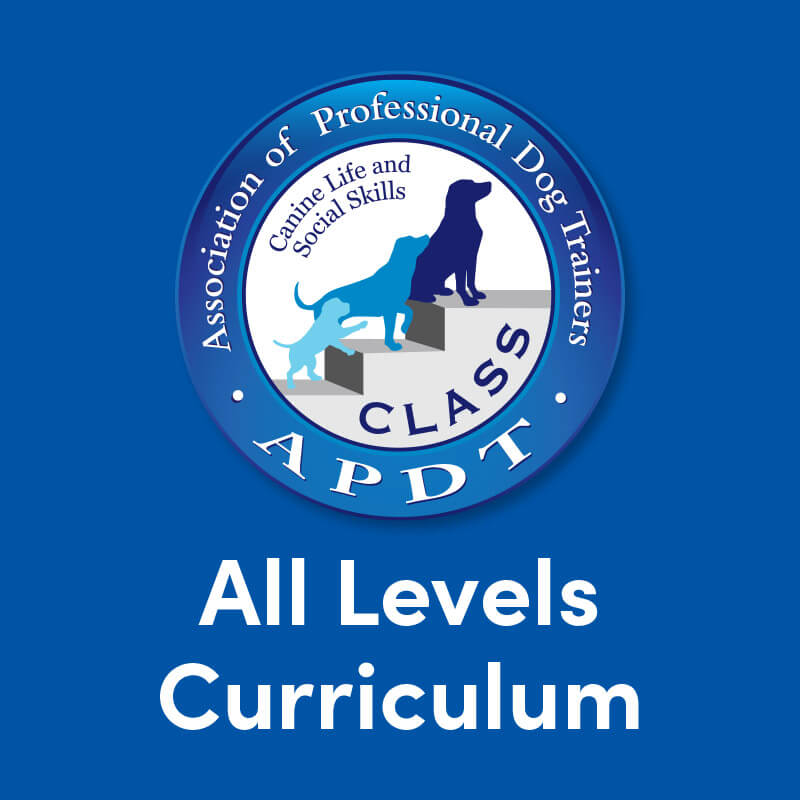 BUNDLE - CLASS Curriculum - All 4 Levels