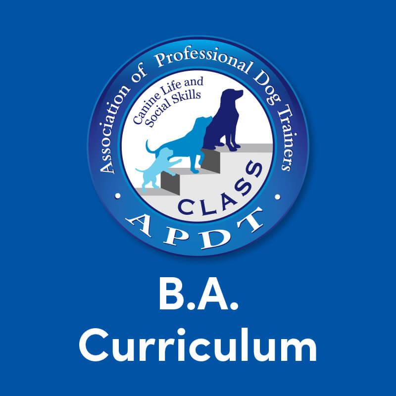 CLASS BA Curriculum