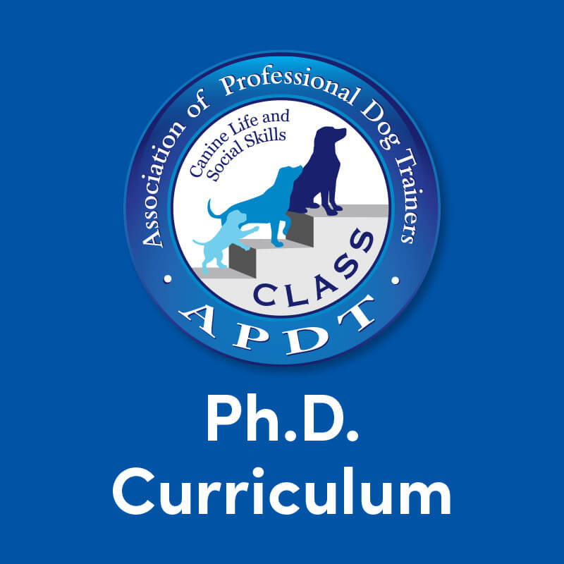 CLASS PhD Curriculum